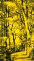 Arbres °10 - 100x180cm -2013 thumbnail