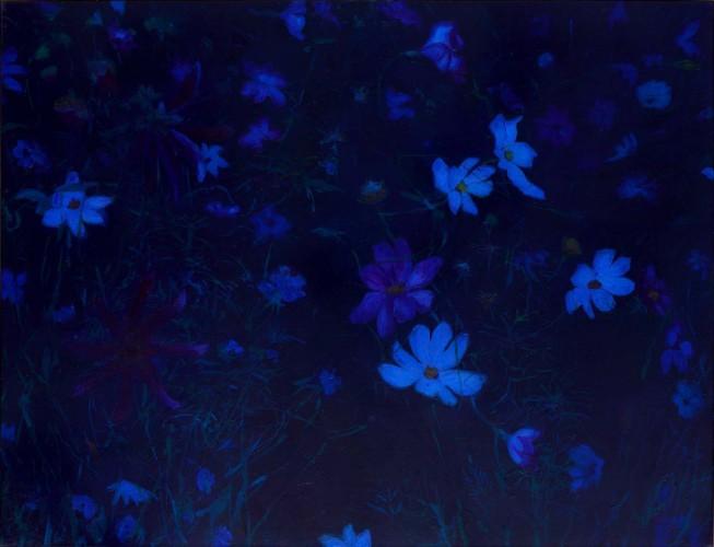 Fleurs °1 - 115x150cm - 2011