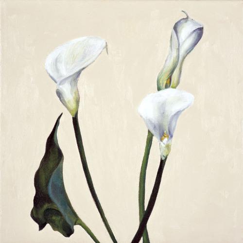 Fleurs °1 - 45x45cm - 2005