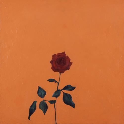 Fleurs °11 - 45x45cm - 2005