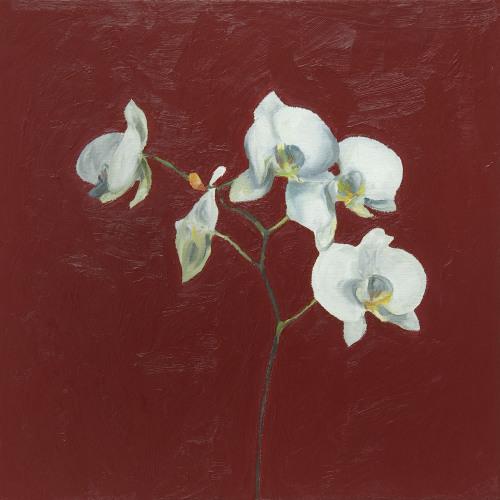 Fleurs °12 - 45x45cm - 2005
