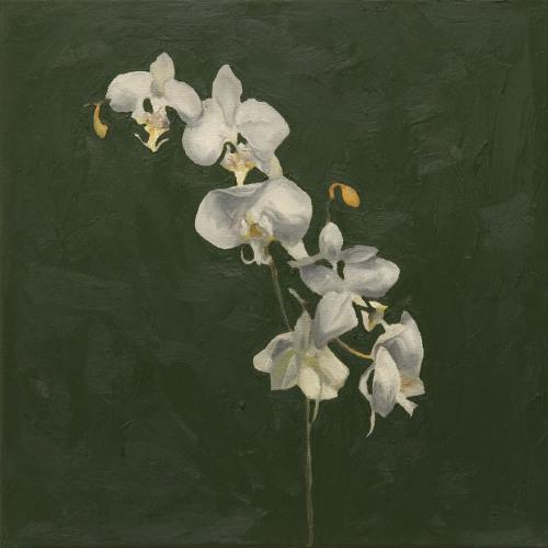 Fleurs °13 - 45x45cm - 2005