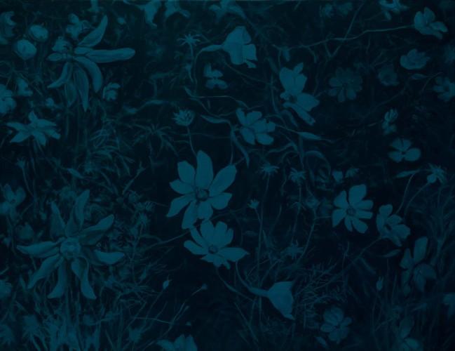 Fleurs °2 - 100x130cm - 2012