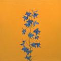 Fleurs °2 - 45x45cm - 2005 thumbnail