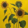 Fleurs °4 - 45x45cm - 2005 thumbnail