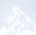 Montagnes °67 - 100x105cm -2012 thumbnail